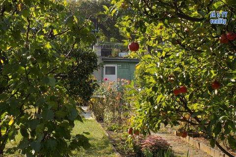 zahrada001