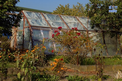 zahrada003