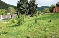 Prodej, Pozemky - zahrady, 856 m²