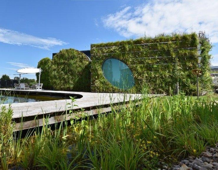 Odpověď na klimatické změny? Více zelená a kompaktní města