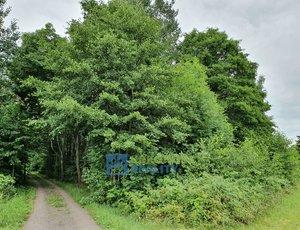 Prodej pozemku, Pozemky pro bydlení, 2920m² - Vítězná - Huntířov