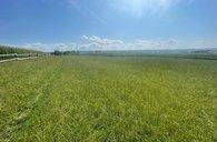 Prodej, Pozemky pro bydlení, 25975m² - Obora