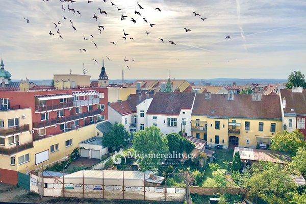Pronájem podkrovního bytu, 2+kk, 57 m² - Znojmo, ul. Alšova