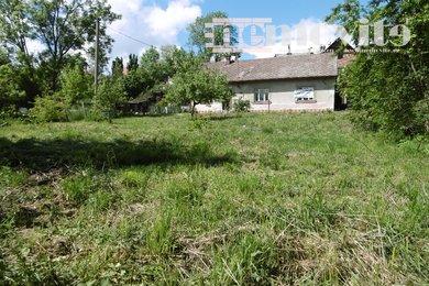 Prodej, Pozemky pro bydlení, 1100m² - Doudleby nad Orlicí, Ev.č.: 02146