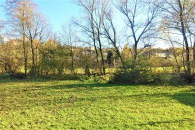 Prodej, Pozemky - trvalý travní porost, 2870m² - Svárov, Ev.č.: 00188