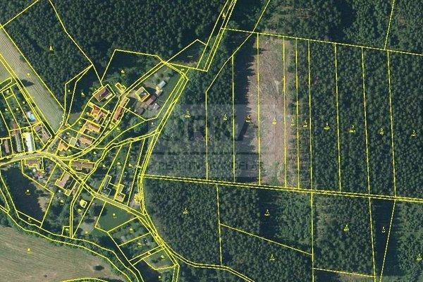 Prodej, Lesy, 5078m² - Budětsko