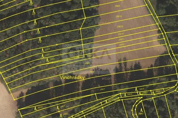 Prodej, Zemědělská půda 1208m², lesní pozemek 70m² - Suchonice