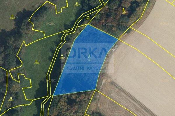 Prodej, Lesy, 8854m² - Otinoves
