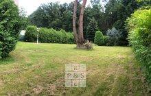 PHOTO-2021-08-12-17-38-49 3