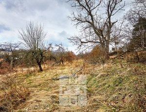 Prodej, Pozemky pro bydlení, 2000m² - Krňany - Teletín