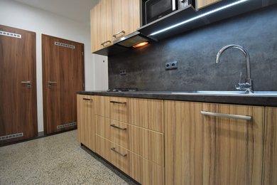 Prodej, Byty 2+kk, 46m² - Praha - Žižkov, Ev.č.: 00068