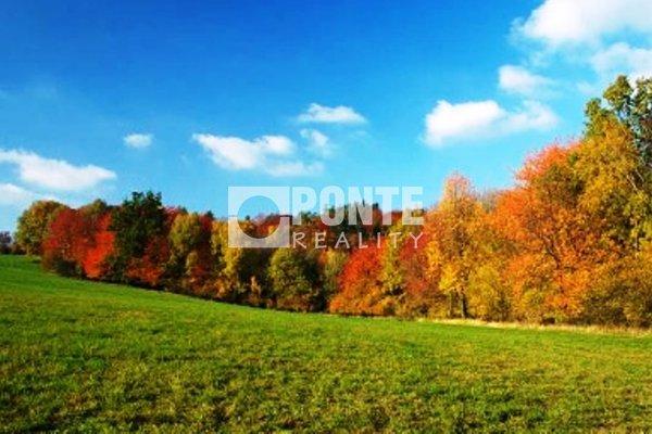 Prodej pozemku 7.344m2, zemědělská půda, Mnichovice u Říčan