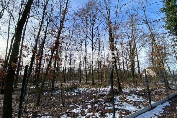 Prodej pozemku 4 125 m2, ul. Na Lesích, Vráž, okres Beroun