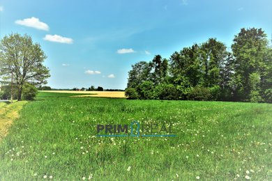 Prodej, Pozemky pro bydlení, 1110m² - Pazderna, Ev.č.: 00053