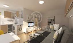 Prodej slunného bytu 1+1 v OV, 27 m2, Brno - Brno-město, ulice Vídeňská