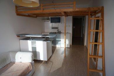 Pronajmeme byt 1+kk, Hnězdenská, Praha 8 - Troja, Ev.č.: PHA00003