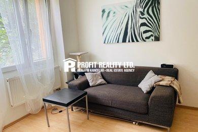 Pronájem bytu 1+kk, 30m² - Praha - Podolí, Ev.č.: 100423