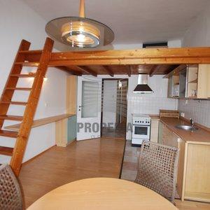 Byt 2+kk, 46m² + spací galerie 8 m2,  u parku, zařízené, top lokalita