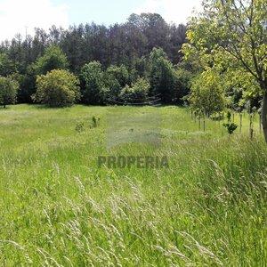 Prodej, Pozemky - zahrady, 548m² - Nížkovice