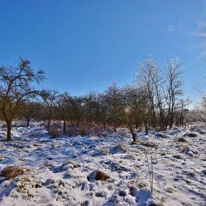 Prodej pozemku 5.000 m2 v Medlově