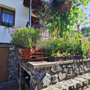 Pronájem, Rodinné domy, 240m² - Boskovice
