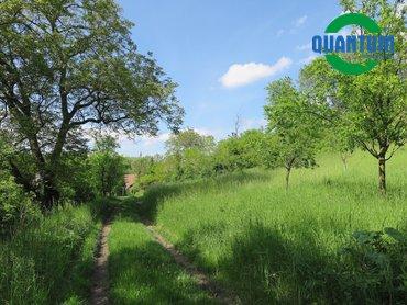 Prodej zahrady, 1 751 m² v obci Pavlovice
