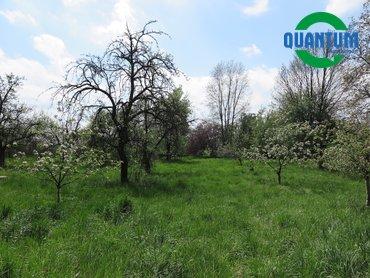 Prodej zahrady 3 602 m² v obci Lobodice