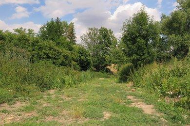 Prodej, Pozemky pro bydlení, 588m² - Rostěnice-Zvonovice, Ev.č.:00194-1