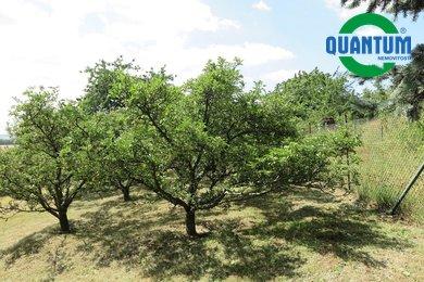 Prodej, Pozemky - zahrady, 1549m² - Luleč, Ev.č.:00286