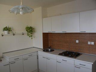 Prodej krásného bytu 1+1 s lodžií, ul. Božetěchova, Brno - Královo Pole