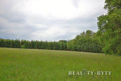 Prodej pozemků s lesním porostem, Křížany - Žibřidice, okr. Liberec, Ev.č.: 264311