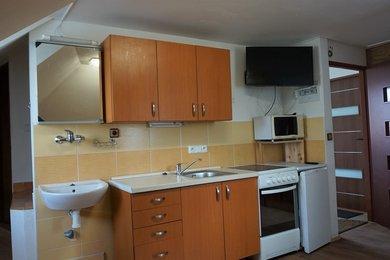 Pronájem bytu Brno-Přízřenice, rekonstruovaný byt 1+kk Zelná, Ev.č.: 100110-1