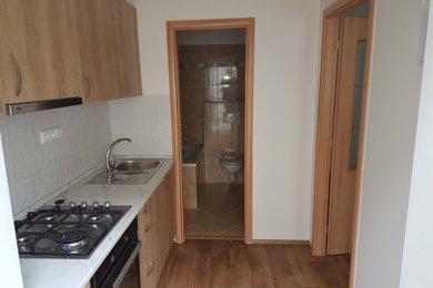 Pronájem bytu Brno-střed (Zábrdovice) - byt po rekonstrukci 1+1 Cejl, Ev.č.: 00002-2