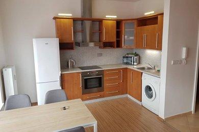 Byt k pronájmu Brno-Slatina, prostorný byt 1+kk s terasou ul. Zlínská, Ev.č.: 100022