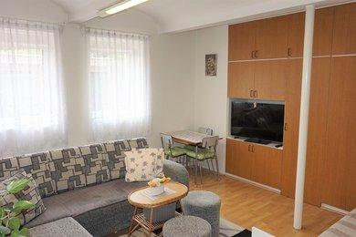 Pronájem bytu Brno-Žabovřesky, pěkný byt 1+kk Královopolská, Ev.č.: 100244-2