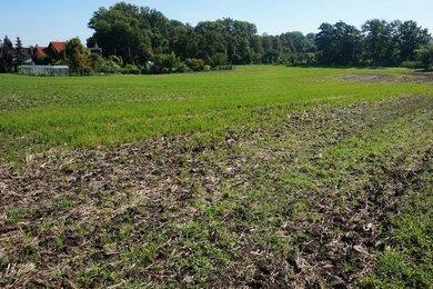 Pozemek 1 043 m2 Rousínov, okr. Vyškov, Ev.č.: 100413