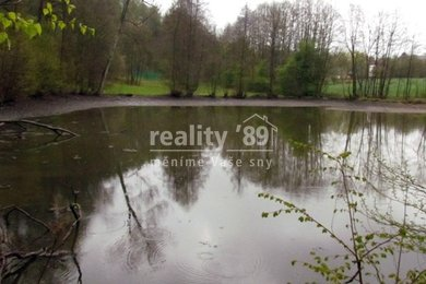 Prodej, Rybník, 7571m² - Smilkov, Ev.č.: 00194