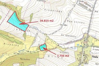 Prodej, Zemědělská půda, 42548m² - Bílá Lhota, Ev.č.: 00281