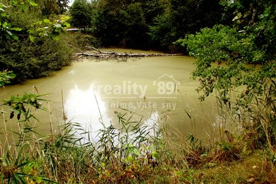 Prodej, Ostatní pozemky, 17293m² - Luka, Ev.č.: 00288