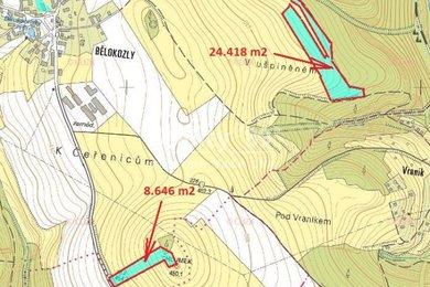 Prodej, Zemědělská půda, 33064m² - Sázava - Bělokozly, Ev.č.: 00277-1