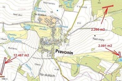 Prodej, Zemědělská půda, 16818m² - Pravonín, Ev.č.: 00297