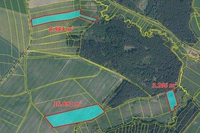 Prodej, Zemědělská půda, 47124m² - Obrataň - Šimpach, Ev.č.: 00307