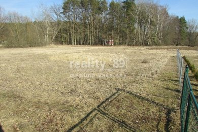 Prodej, Pozemky - zahrady, 4280m² - Skalice - Rybova Lhota, Ev.č.: 00309