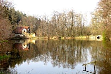 Prodej, Pozemky - trvalý travní porost, 32369m² - Smilkov - Kouty, Ev.č.: 00314