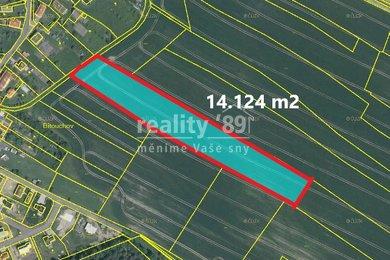 Prodej, Zemědělská půda, 14124m² - Bakov nad Jizerou - Zvířetice, Ev.č.: 00323