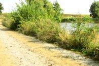 Silniční rybník 5