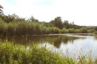 Slabův rybník 3