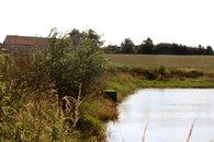 Slabův rybník  1