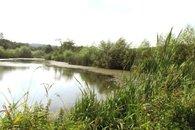 Slabův rybník 2