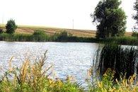 Silniční rybník 7